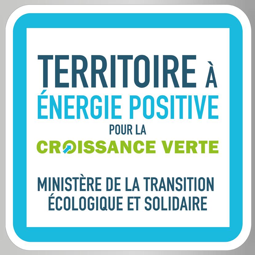 logo TEPCV